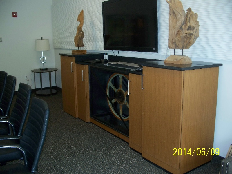 Custom Retail Entertainment Center